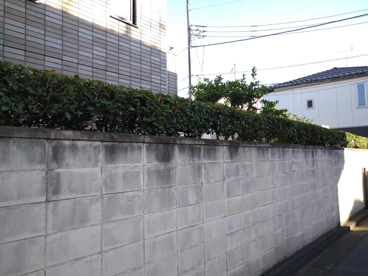 f:id:yakichimususu:20201204180159j:plain