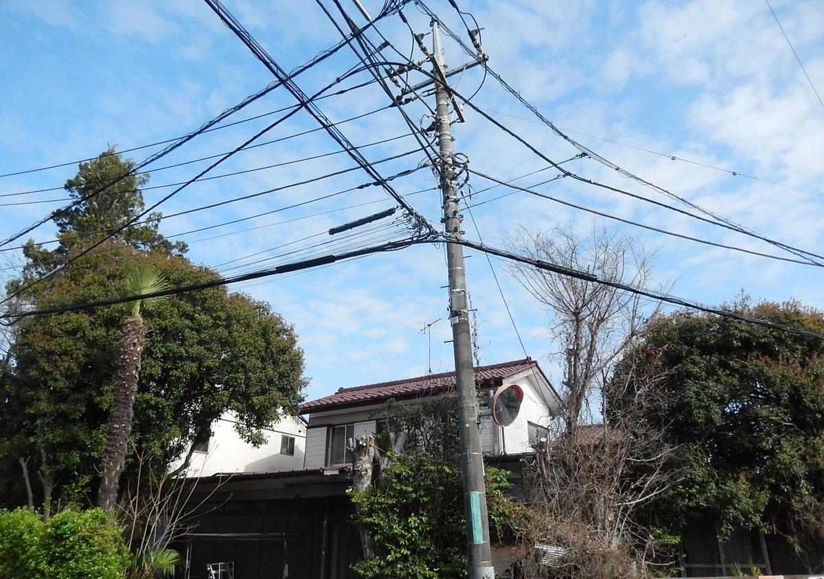 f:id:yakichimususu:20210403190749j:plain