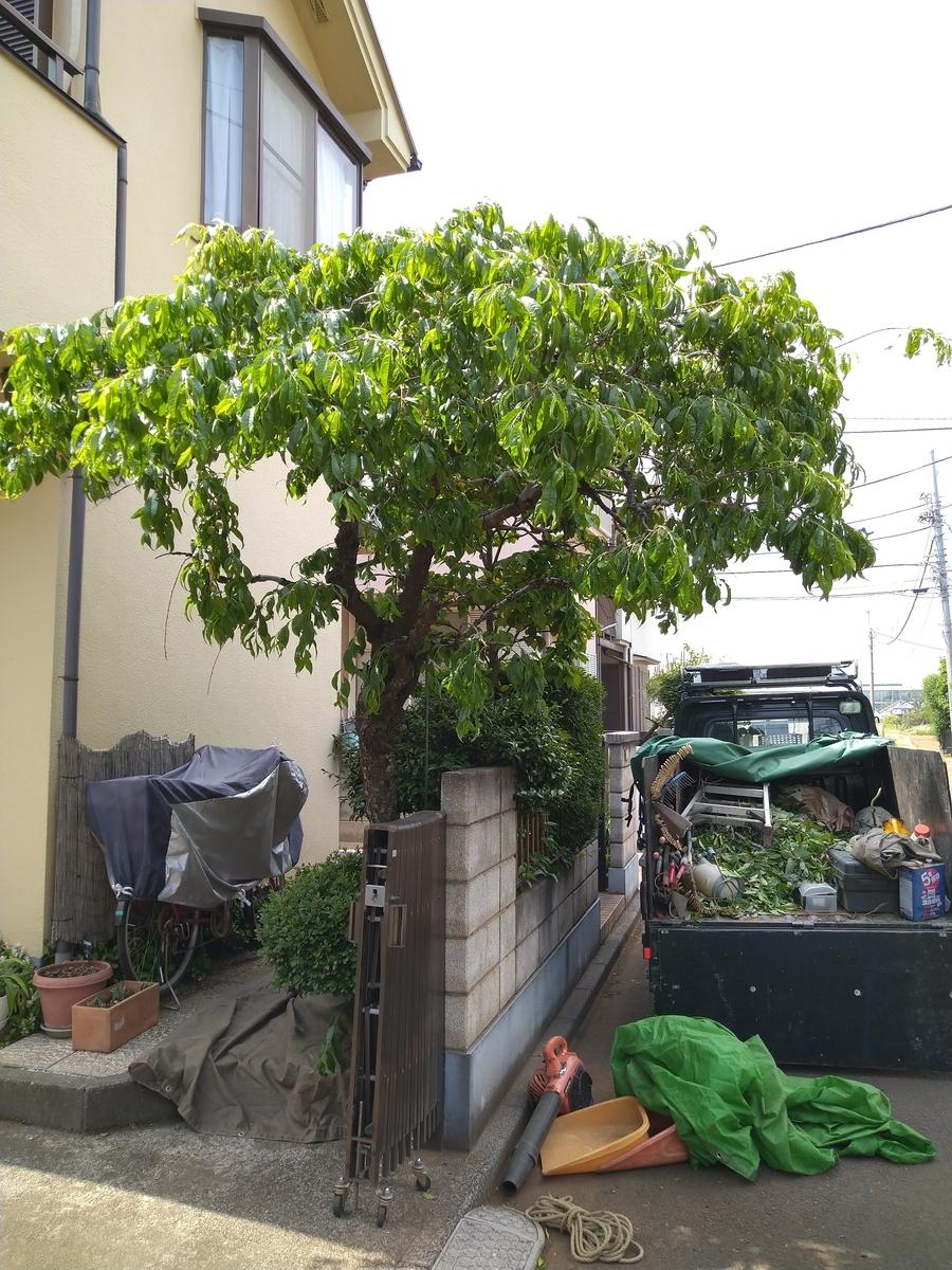 f:id:yakichimususu:20210509180159j:plain