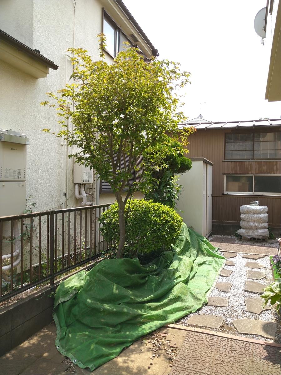 f:id:yakichimususu:20210509180429j:plain