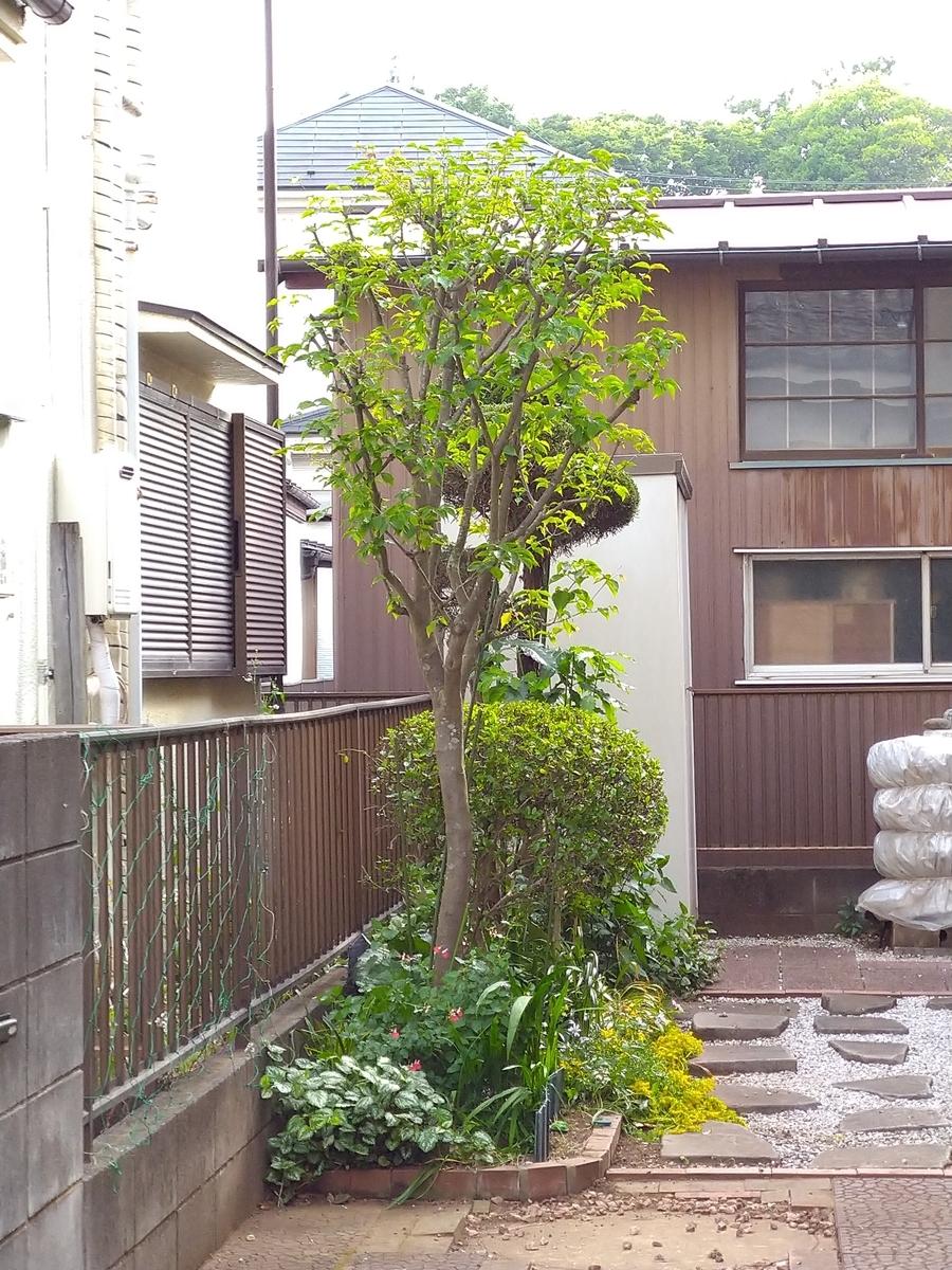 f:id:yakichimususu:20210509180523j:plain