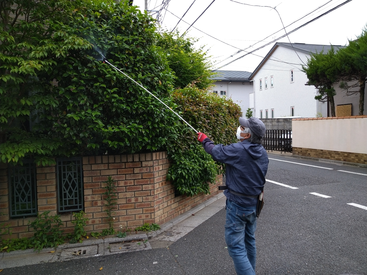 f:id:yakichimususu:20210511194249j:plain