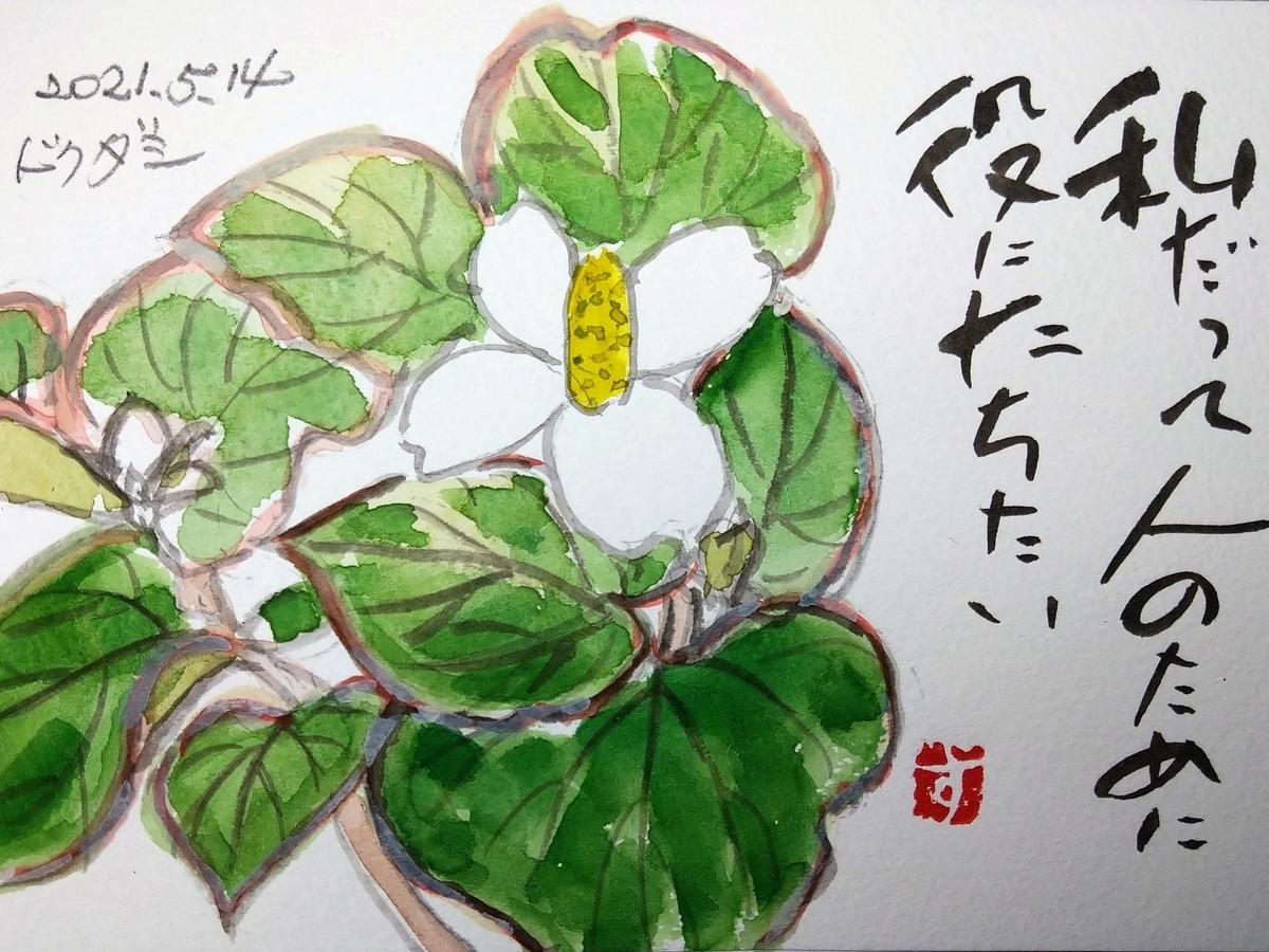 f:id:yakichimususu:20210514205447j:plain