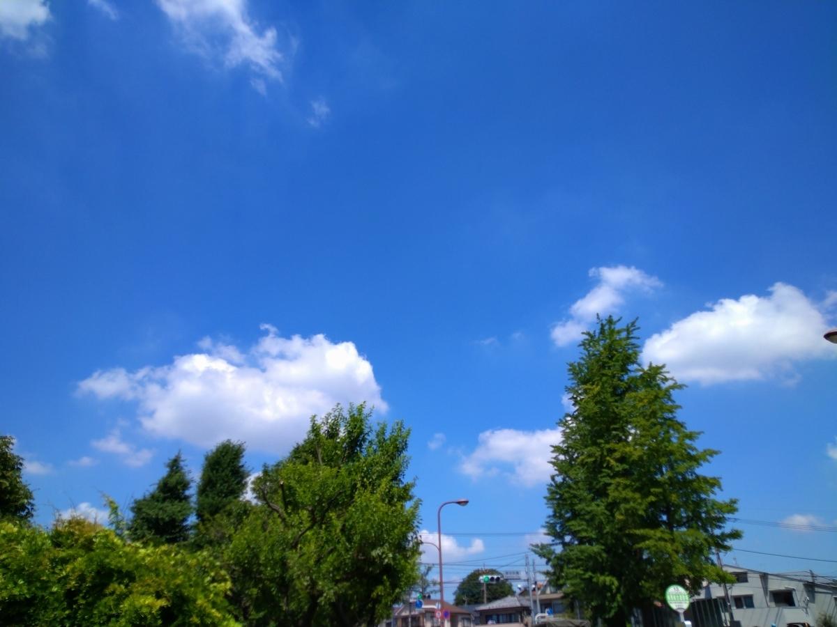 f:id:yakichimususu:20210719213506j:plain