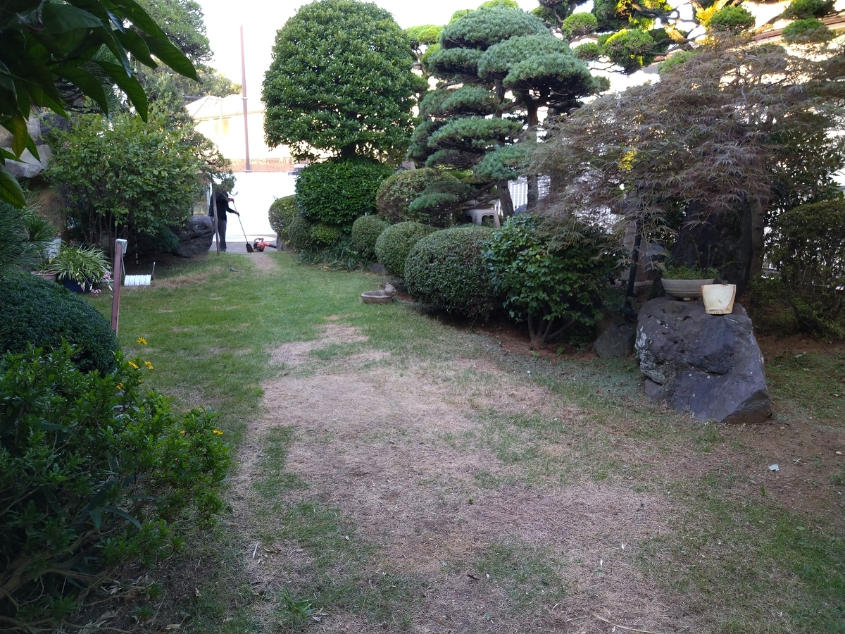 f:id:yakichimususu:20210719215328j:plain
