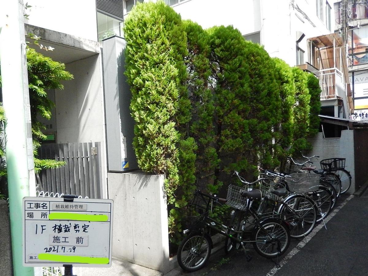 f:id:yakichimususu:20210729214705j:plain