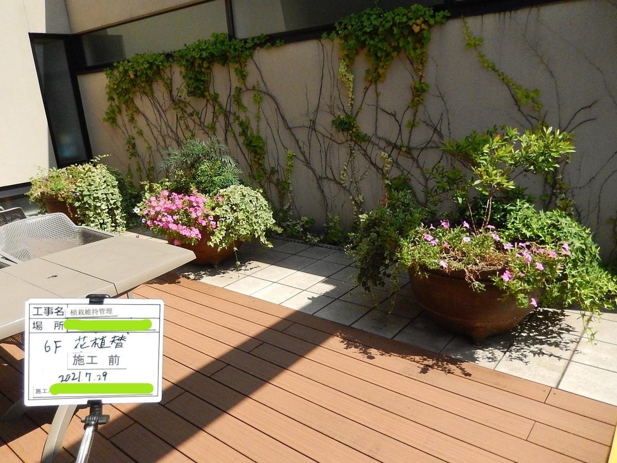 f:id:yakichimususu:20210729220204j:plain