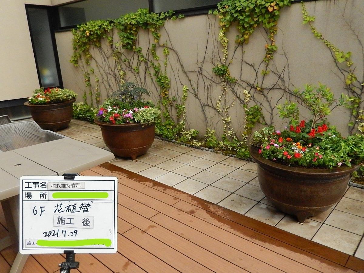f:id:yakichimususu:20210729220246j:plain