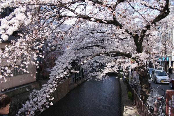 f:id:yakiniku-kurozakura:20170325223050j:plain
