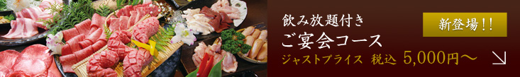 f:id:yakiniku-kurozakura:20170530175250j:plain