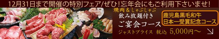 f:id:yakiniku-kurozakura:20171107180621j:plain