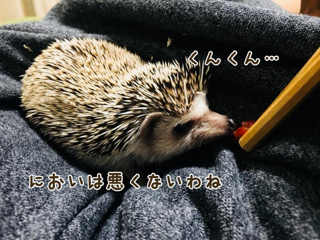 f:id:yakitoripie:20180128085841j:plain