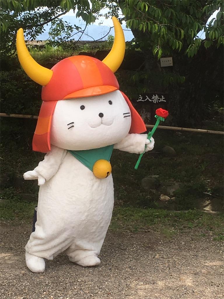 f:id:yakizakanateisyokun:20180615223545j:image