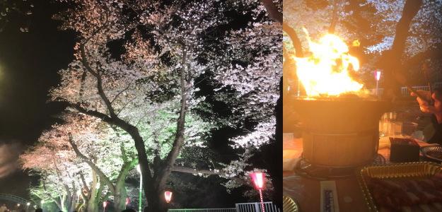 f:id:yako:20190331224958j:image:w468,h225,right
