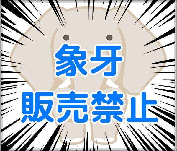 f:id:yakudacchi:20190813160341j:plain