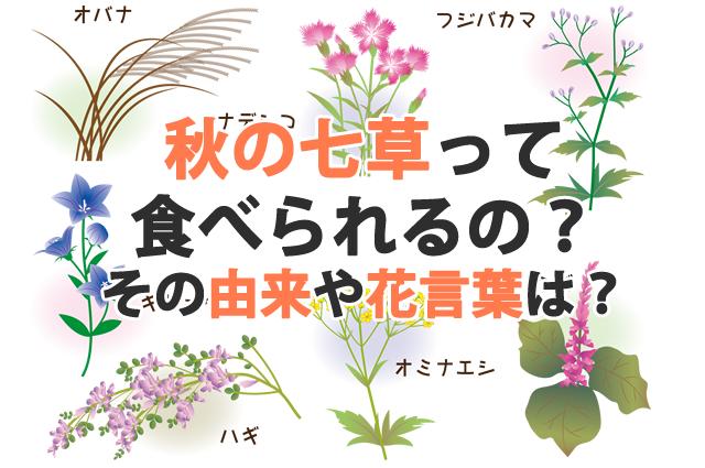f:id:yakudacchi:20191007114709p:plain