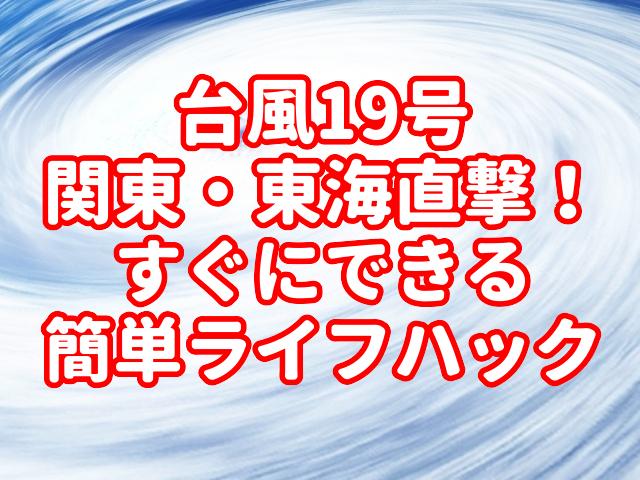 f:id:yakudacchi:20191011160247j:plain