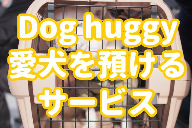 f:id:yakudacchi:20200302145904j:plain