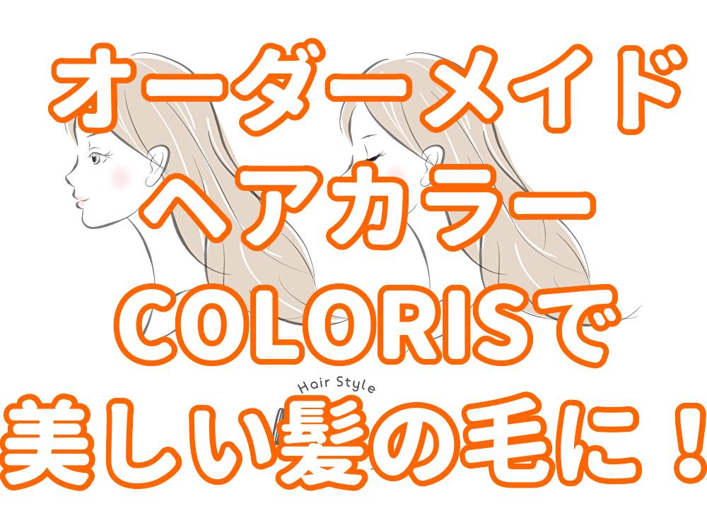 f:id:yakudacchi:20200303152113j:plain