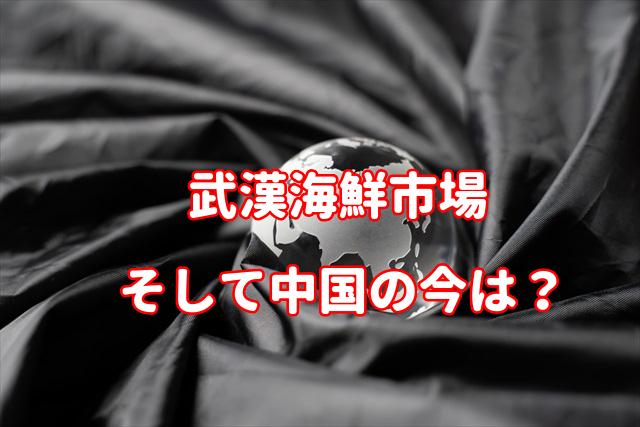 f:id:yakudacchi:20200305142529j:plain