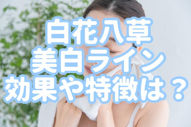 f:id:yakudacchi:20200310170602j:plain