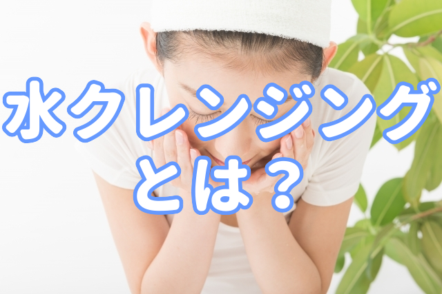f:id:yakudacchi:20200427173035j:plain