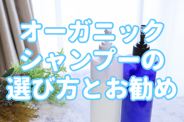 f:id:yakudacchi:20200626151045j:plain
