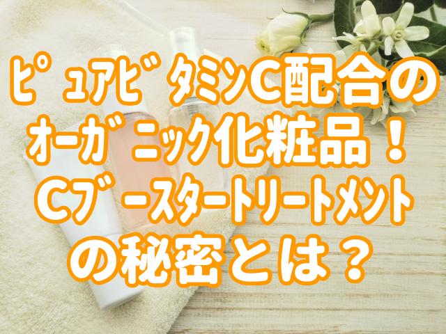 f:id:yakudacchi:20200720162052j:plain