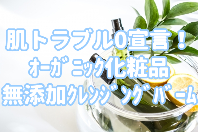 f:id:yakudacchi:20200729151958j:plain