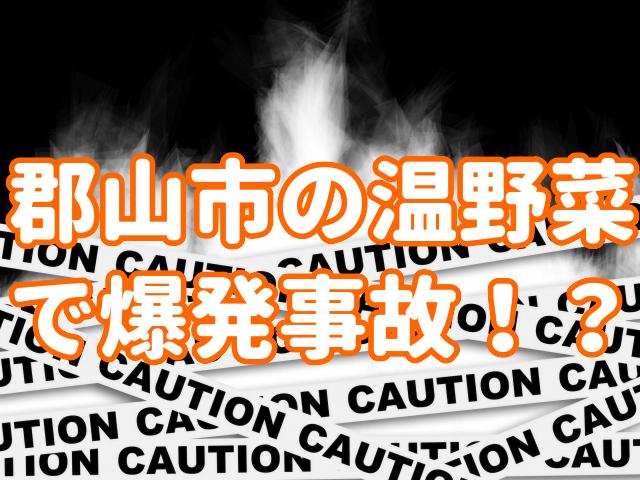 f:id:yakudacchi:20200730151414j:plain