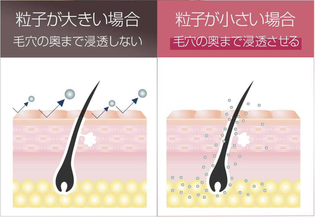 f:id:yakudacchi:20201120152147j:plain