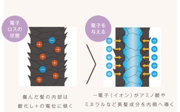f:id:yakudacchi:20201125161312j:plain