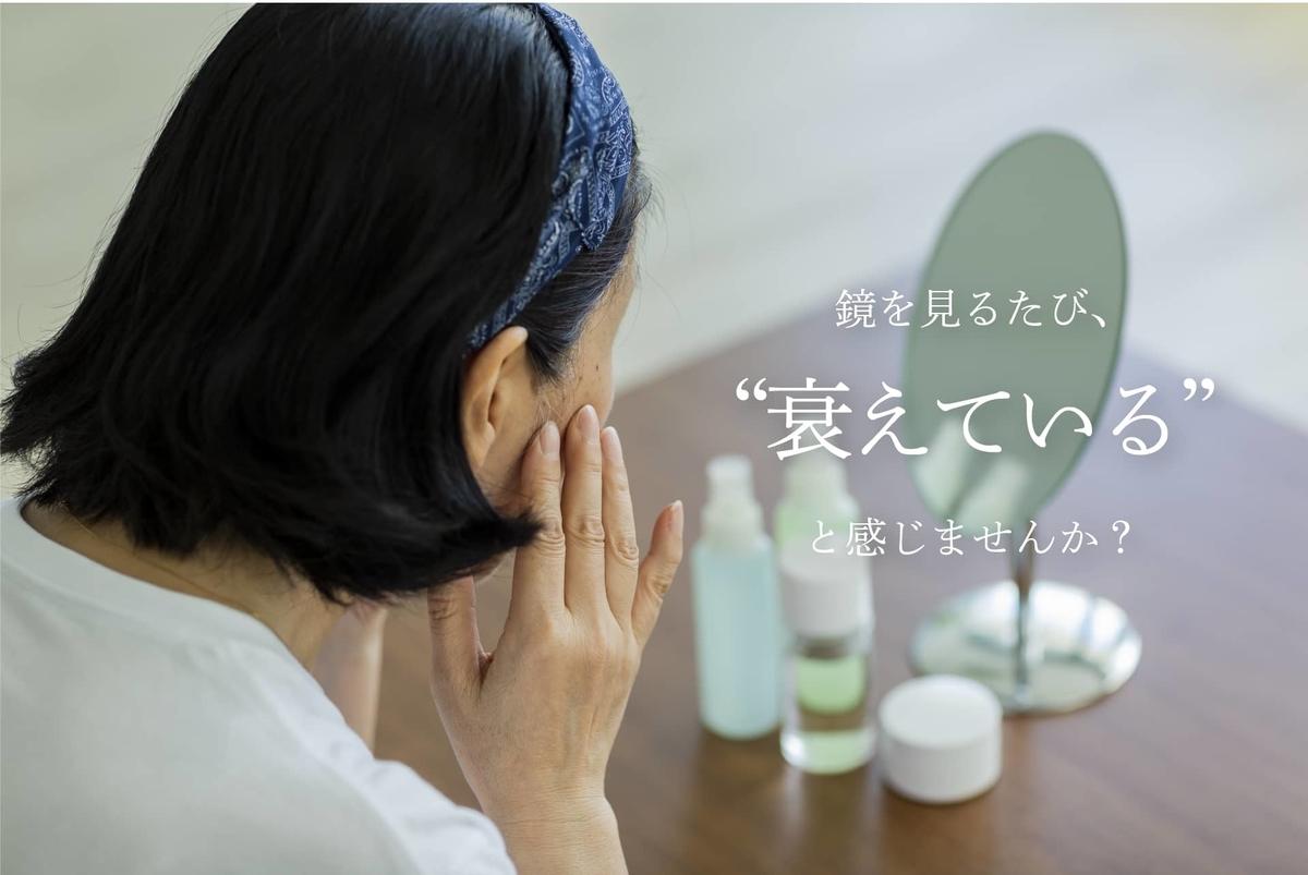 f:id:yakudacchi:20201204143203j:plain