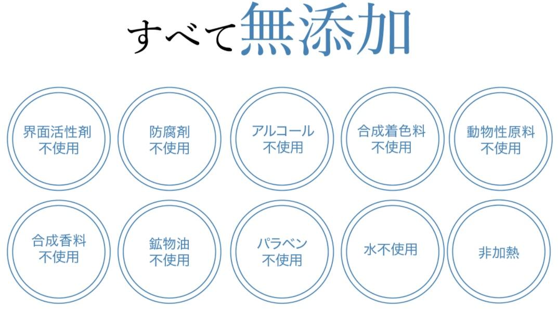 f:id:yakudacchi:20201210142147j:plain