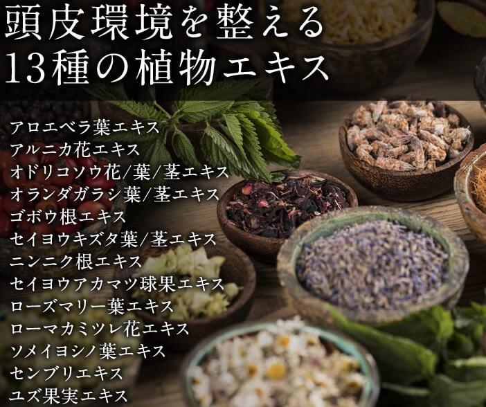 f:id:yakudacchi:20201215144528j:plain