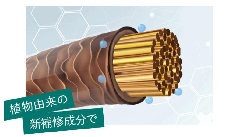 f:id:yakudacchi:20201215144540j:plain