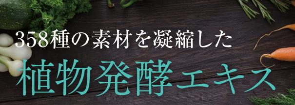 f:id:yakudacchi:20201217180701j:plain