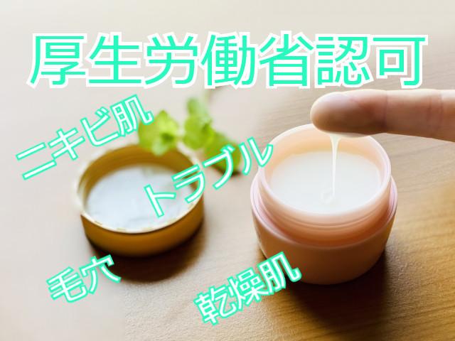 f:id:yakudacchi:20201225180425j:plain