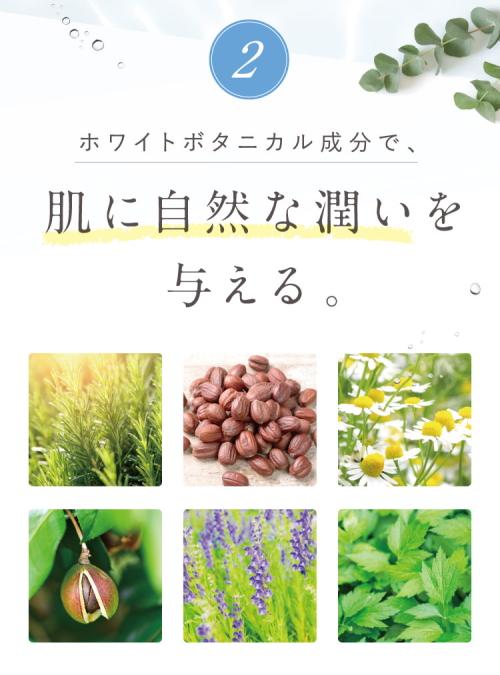 f:id:yakudacchi:20201228144045j:plain