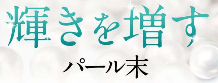 f:id:yakudacchi:20210107181825j:plain