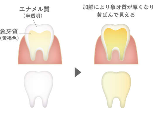 f:id:yakudacchi:20210113150733p:plain