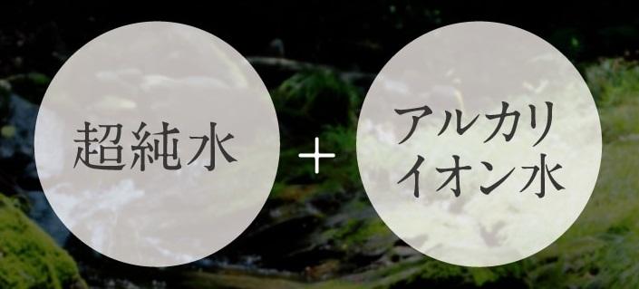 f:id:yakudacchi:20210120150102j:plain