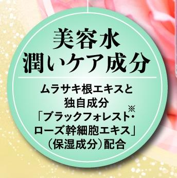 f:id:yakudacchi:20210121184339j:plain