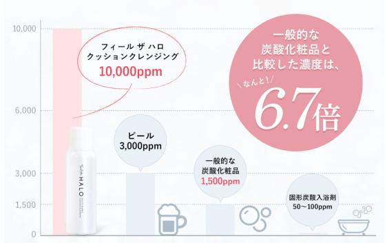 f:id:yakudacchi:20210122174951j:plain
