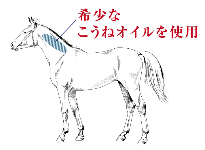f:id:yakudacchi:20210126165230j:plain