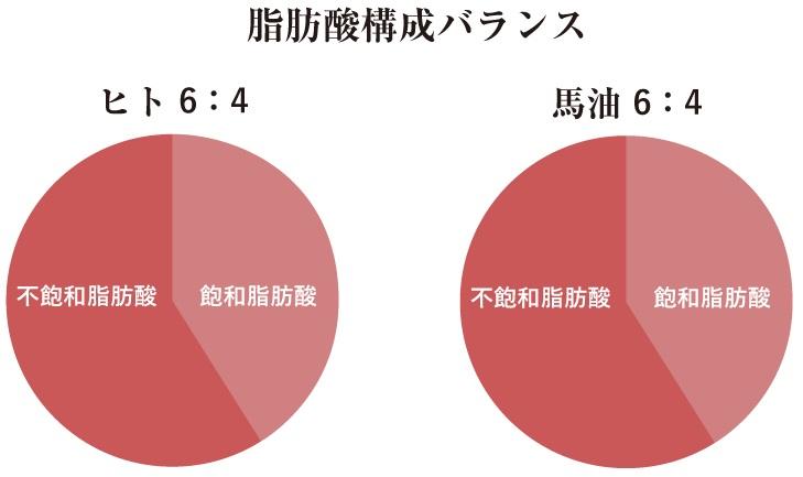 f:id:yakudacchi:20210126165317j:plain
