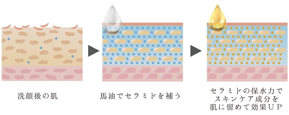 f:id:yakudacchi:20210126181038p:plain