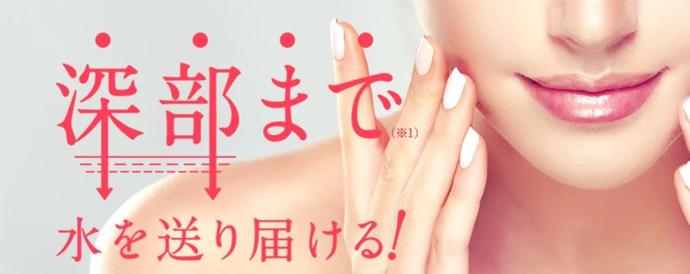f:id:yakudacchi:20210127161127j:plain