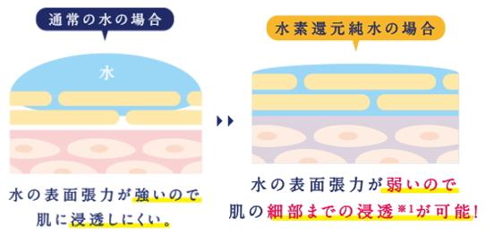 f:id:yakudacchi:20210127173450j:plain