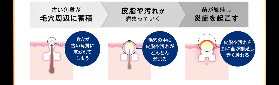 f:id:yakudacchi:20210129172925p:plain